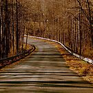 Country Road.....as far as the eye can see   ^ by ctheworld