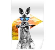 Crazy cool kangaroo Poster