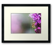 Insect on a Purple Flower Framed Print
