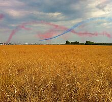 Planes flying over fields by Caroline  Peacock