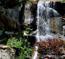 Waterfall     ^ by ctheworld