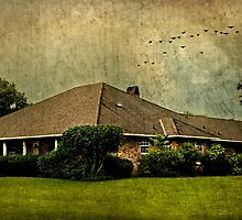 Home is where the heart lives by Scott Mitchell