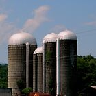 Working Farm - Silos by ctheworld