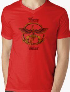 Valor Team Red Pokeball flag emblem Mens V-Neck T-Shirt