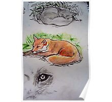 Mrs Fox takes a well earned rest! Poster