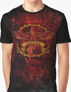 Valor Team Red Pokeball flag emblem Graphic T-Shirt