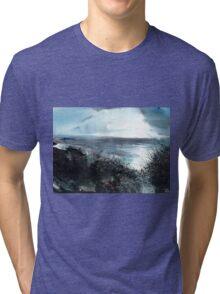 Seaface Tri-blend T-Shirt