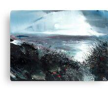 Seaface Canvas Print