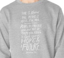 Jeremiah 29: 11 x Rose Pullover