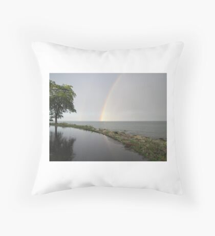 Rainbows Throw Pillow
