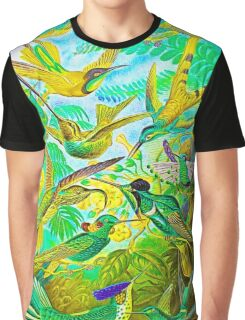 Plants & Animals, humming bird, rainforest, hummingbirds, psychedelic, art, illustration, haeckel,  Graphic T-Shirt