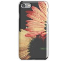 Two daisies iPhone Case/Skin