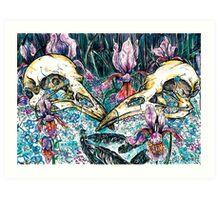 Corvus, Corvid Art Print