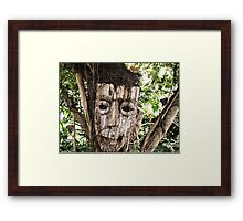 Butterfly Farm Mask Framed Print
