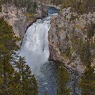 Upper Falls of the Yellowstone  by John  Kapusta