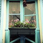 The Window with the Blue Shutters by Caroline Fournier