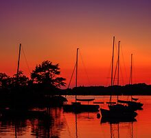 Sailors' delight by Owed To Nature