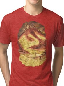 Sleeping Smaug Tri-blend T-Shirt