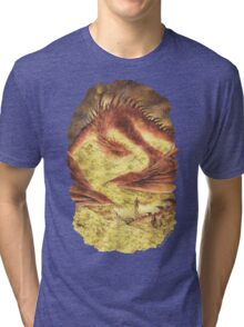 Sleeping Smaug Tri-blend T-Shirt