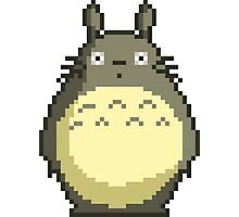 -TOTORO- Totoro Pixel Style Photographic Print