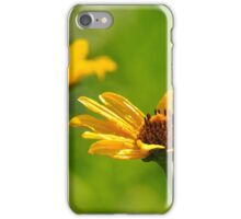 Golden Sunned Flowers iPhone Case/Skin