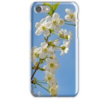 Apple blooming with blue sky iPhone Case/Skin