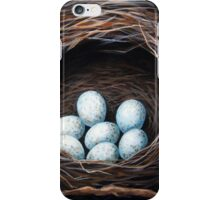 Bird Nest with eggs realistic still life nature art iPhone Case/Skin