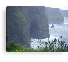 cliffs of moher, co. clare.  Canvas Print