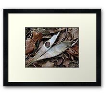 In the Dead of Winter Framed Print
