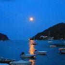 Moonlight by jojojem