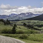 Winding Mountain Road by Thomas Young