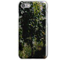 Summer Vineyard iPhone Case/Skin