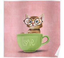 Kitten in a big cup Poster