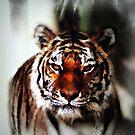 Tiger Painting by Darlene Lankford Honeycutt