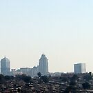 Johannesburg skyline by Antionette