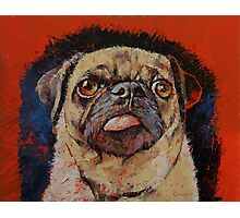 Pug Portrait Photographic Print