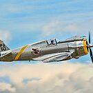 Curtiss P-36C Hawk 38-210 G-CIXJ by Colin Smedley