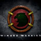 Hawkman by BigRockDJ