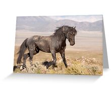 Rugged Beauty Greeting Card