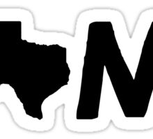 Texas Home TX Sticker