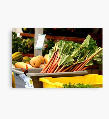 Lovely Rhubarb Canvas Print