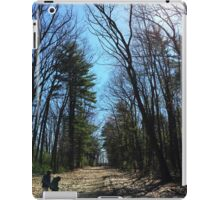 Forest by the lake iPad Case/Skin