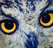 Owl Eyes by phil decocco