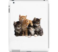 Little Kittens iPad Case/Skin