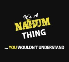 It's A NAHUM thing, you wouldn't understand !! by satro