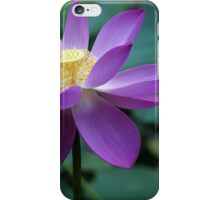 The Lotus Flower iPhone Case/Skin