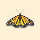 Monarch by Mark Podger