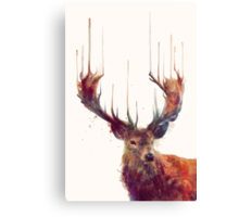 Red Deer Canvas Print