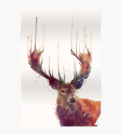 Red Deer Poster