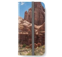 Dead Tree at Arches National Park-Utah iPhone Wallet
